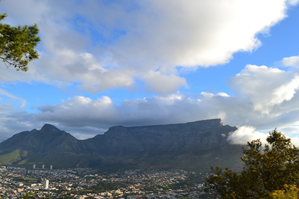 There is SO much to do in Capetown! What an amazing place