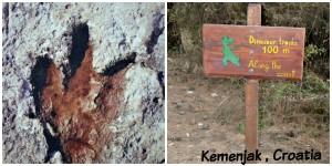 Kemenjak dinosaur tracks?