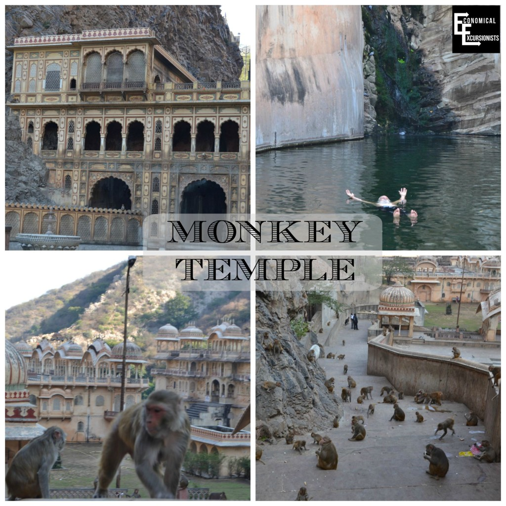 Jaipur Monkey Temple