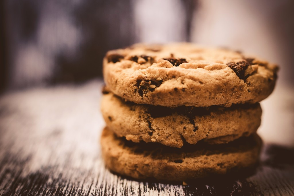 Lactation Cookies for traveling without breastfed baby