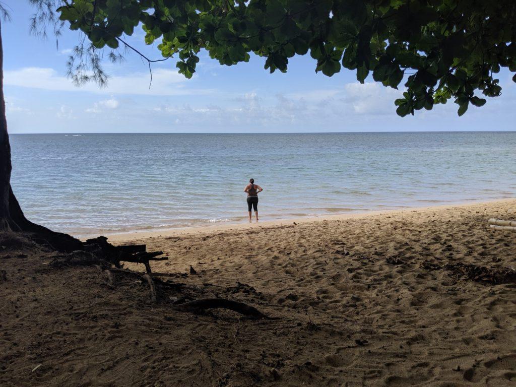 anini beach camping